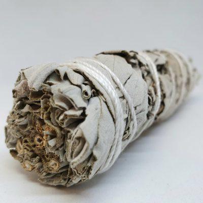 Pure white sage smudge stick